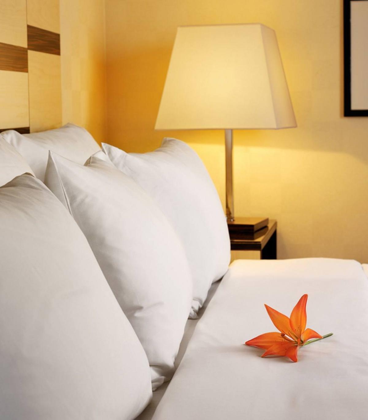 Des draps maxi size adapt s la plus grande taille de lit - Draps grande taille lit 180x200 ...